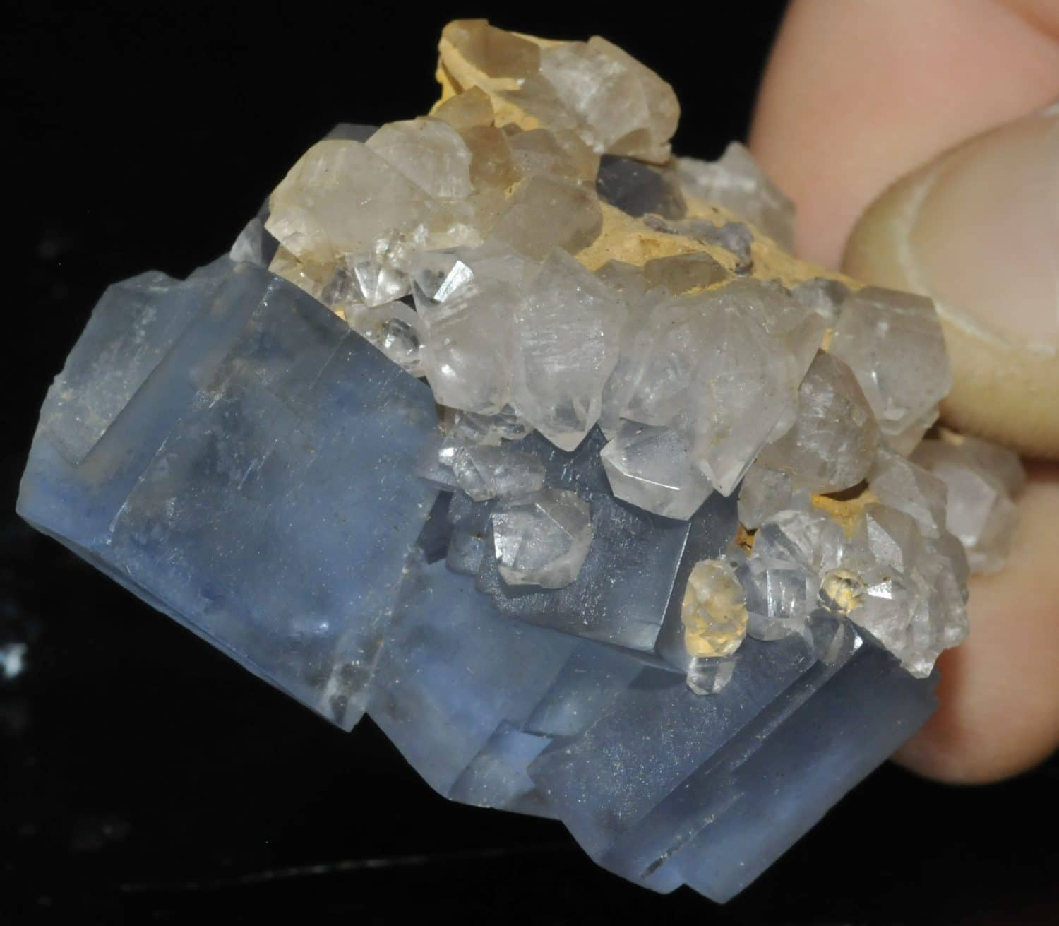 Blue fluorite from the Embournegade mine (Tarn, France)