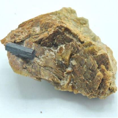 Bournonite sur sidérite de Saint-Pons (Alpes-de-Haute-Provence)